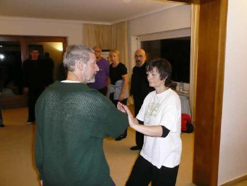 Push Hands Treffen Demo